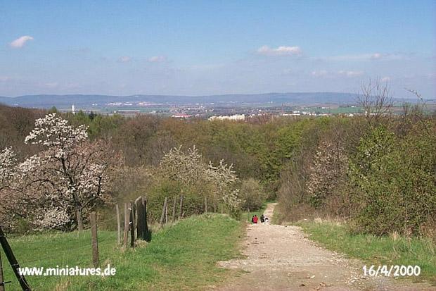 Blick von der Wegkreuzung (8) nach Norden, dem Weg in den Vilbeler Stadtwald folgend.