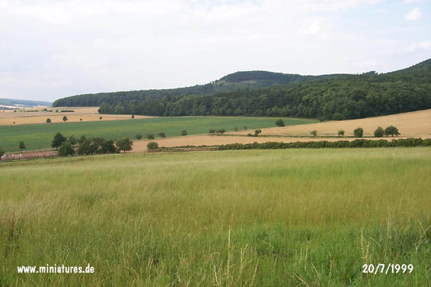 View from the Schmiedebrink, looking west, toward the Schecken.
